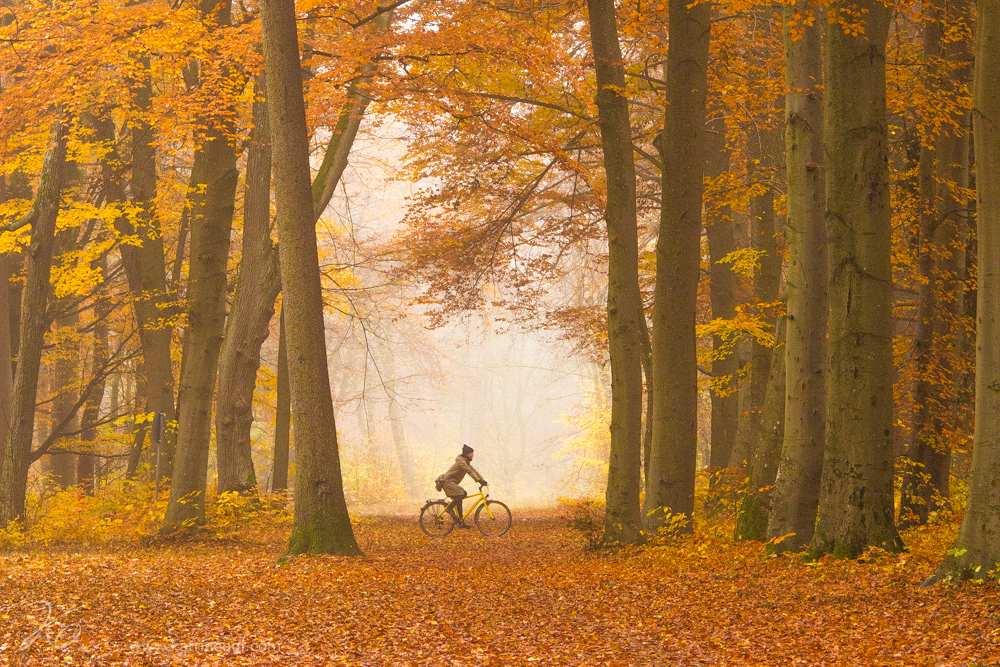 Autumn-in-Augsburg-3.jpg