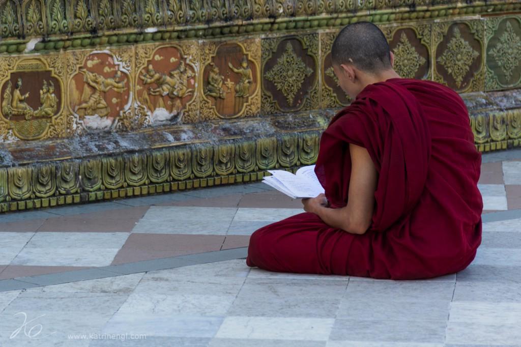 Reading Monk Shwedagon Pagoda Yangon Myanmar