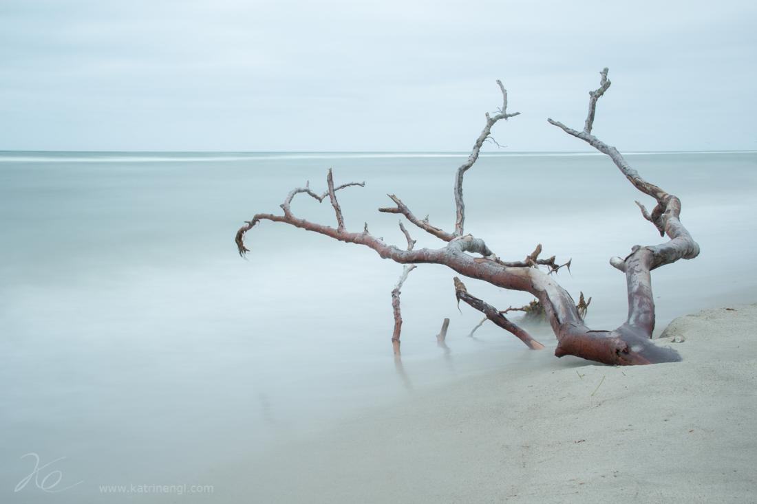 West beach in Darss