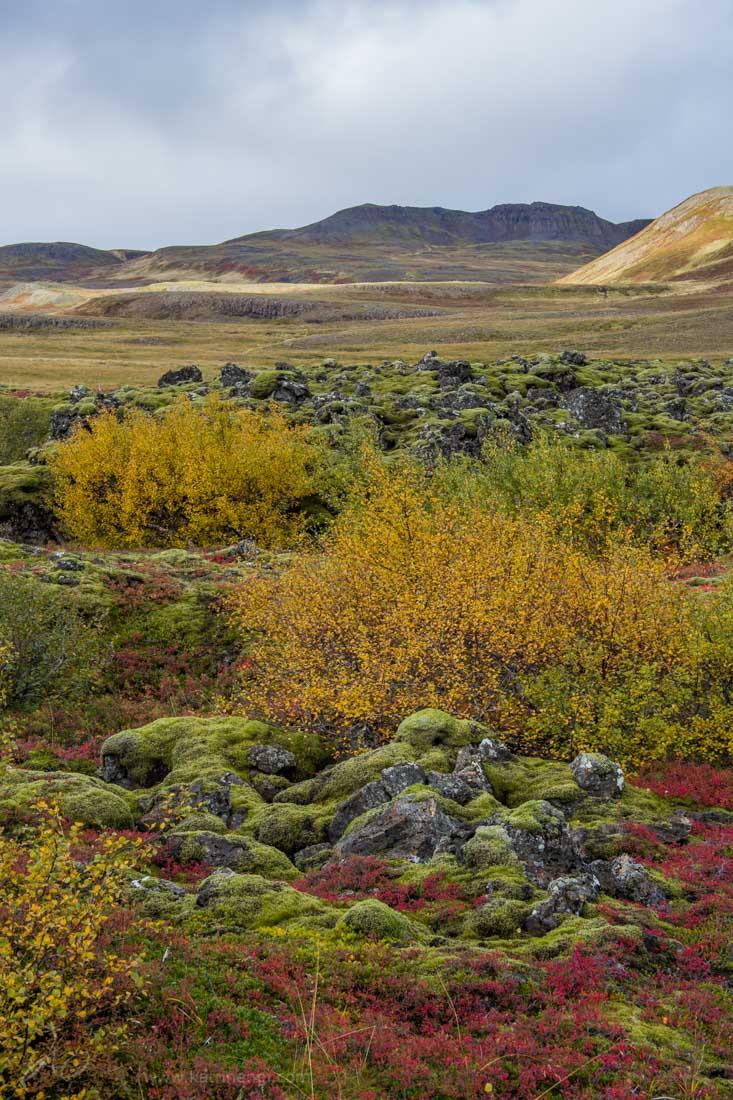 Autumn in Vesturland Iceland